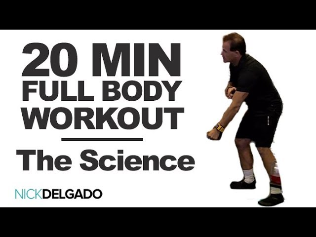 20 Minute FULL BODY Workout (Chest, Legs, Arms) – What's Happening In Your Body Part 2